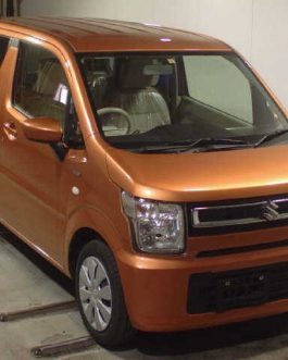 WAGON R 2018 BRONZE COLOR